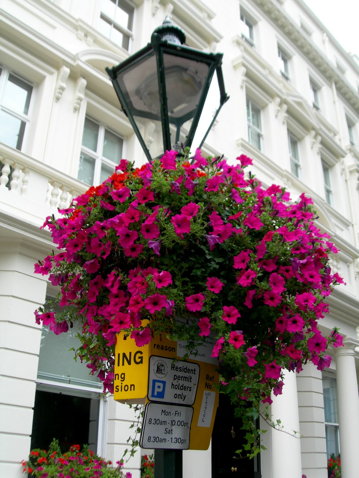 Dibattito morsanese decorazioni floreali nei paesi for Vasi appesi