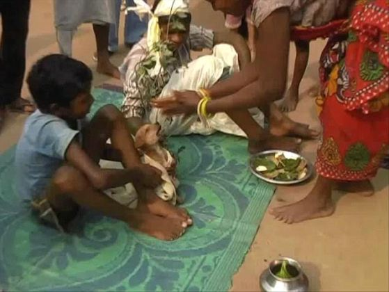OMG! 7Yrs Old Boy In India Get Marry To A Dog [ Photos ]