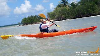 kayak, guadeloupe, guadeloupe kayak, mangrove, lagon