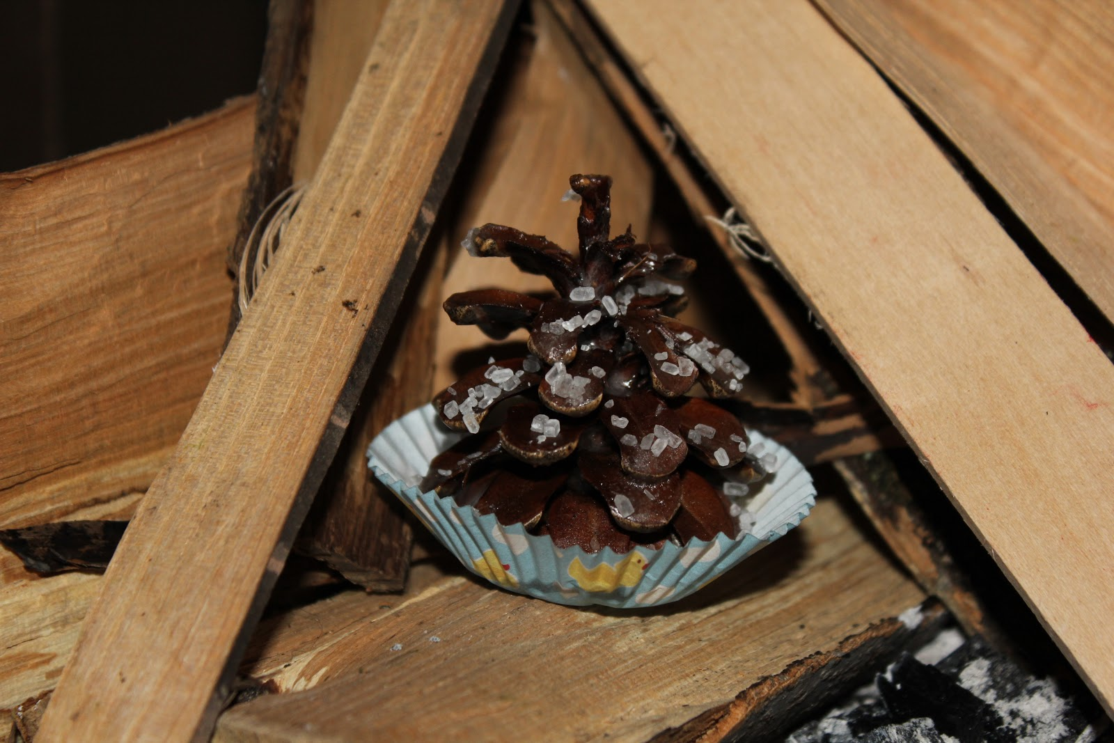 Keep em going farm pine cone fire starters things to do for Things to make with fir cones