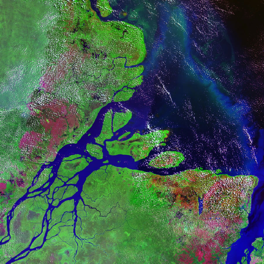 Amazon river brazil yukon river alaska lena river russia