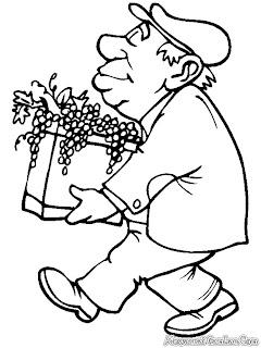 Pak Syafei Membawa Anggur Dari Kebun Kerumah