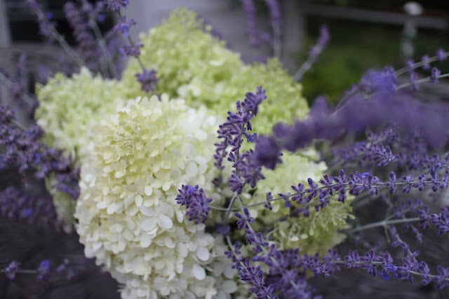 The Garden Appreciation Society, The Impatient Gardener, Limelight hydrangea + Russian sage
