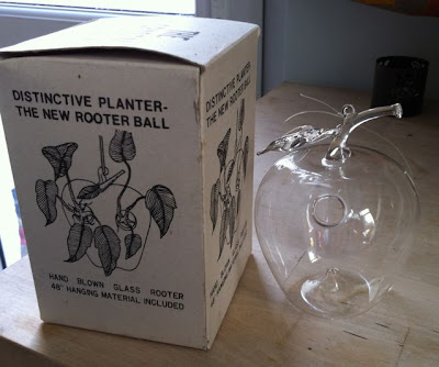 glass apple rooter ball