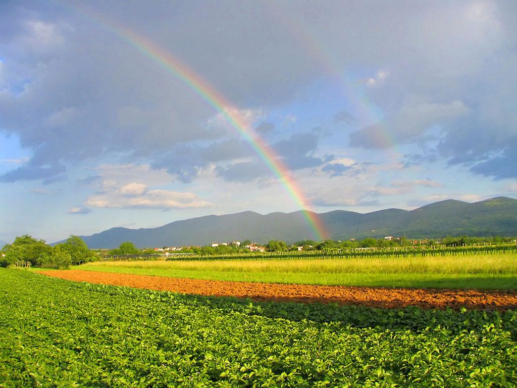 http://1.bp.blogspot.com/-E9kfO61hUyE/TrV4kaN_ZSI/AAAAAAAADgM/Ge8NhtTpuy4/s1600/Rainbow17.jpg