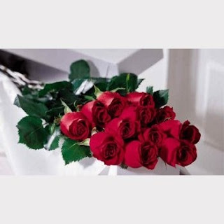 Send a Bouquet of Hand Delivered Roses