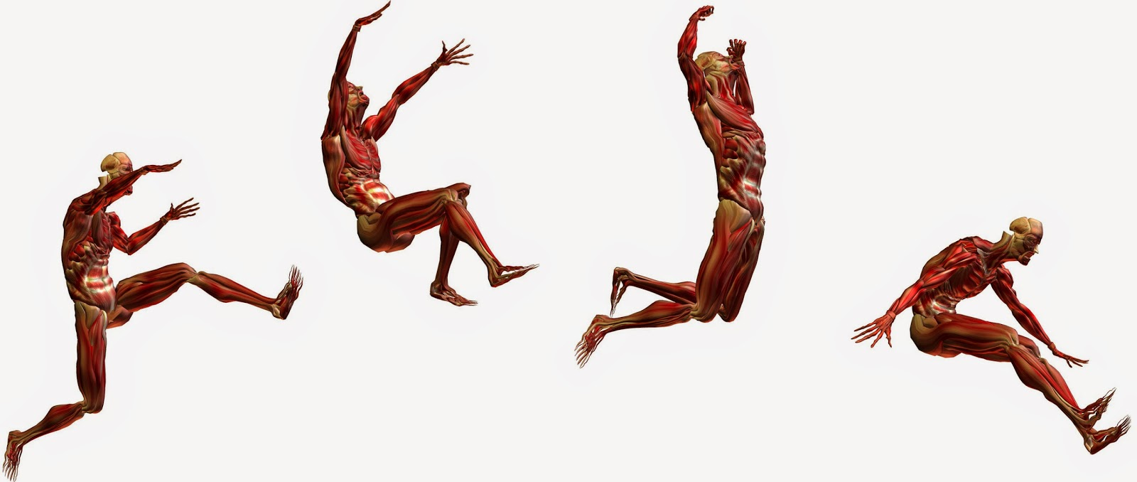 fit360 Blog: Biomecánica para dummies: Movimiento eficiente