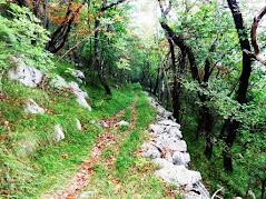 Andar per ostelli - salire dal mare al Carso - da Miramare a Pliskovica