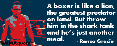 A boxer is like a lion  A Boxer's Prayer