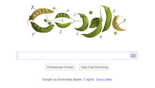 Google Today