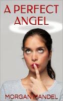 A Perfect Angel by Morgan Mandel