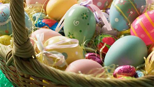 Eggs Wallpaper