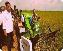 Presiden Jokowi Ingin Merauke jadi Pusat Pangan Berbasis Teknologi