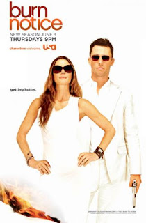 poster for burn notice 353x537 Assistir Burn Notice 7 Temporada Online Dublado | Legendado | Series Online