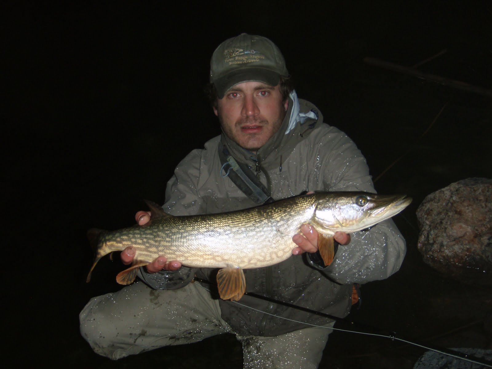 Colorado fly fishing reports northern pike directory for Pike fly fishing