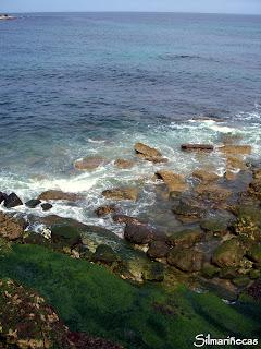 mar Cantábrico - Cóbreces - Cantabria
