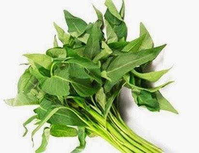 Manfaat Hebat Daun Kangkung,manfaat daun salam,daun pandan,binahong,seledri,pisang,kumis kucing,mint,sirih,