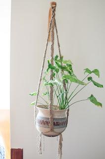 macrame, plant, hanger, basket. craft, arum