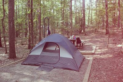a dome tent in the woods