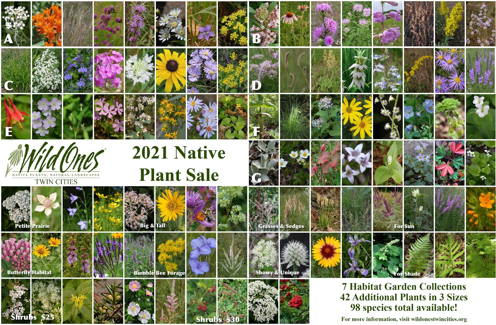 2021 WOTC Native Plant Sale