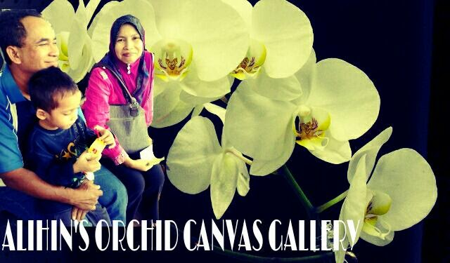 ORCHID CANVAS GALLERY ✿
