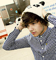 Biodata One Direction Liam Payne