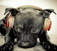 musica_music