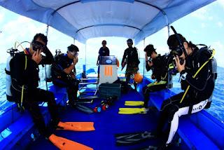 パラオ クルーズ ダイビング ツアー 世界遺産 旅行