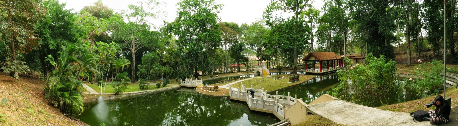 Image result for PARQUE CHINO panama