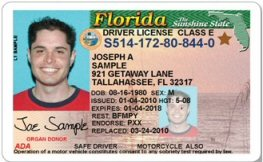 Florida State Driver License Template Softwares Accu