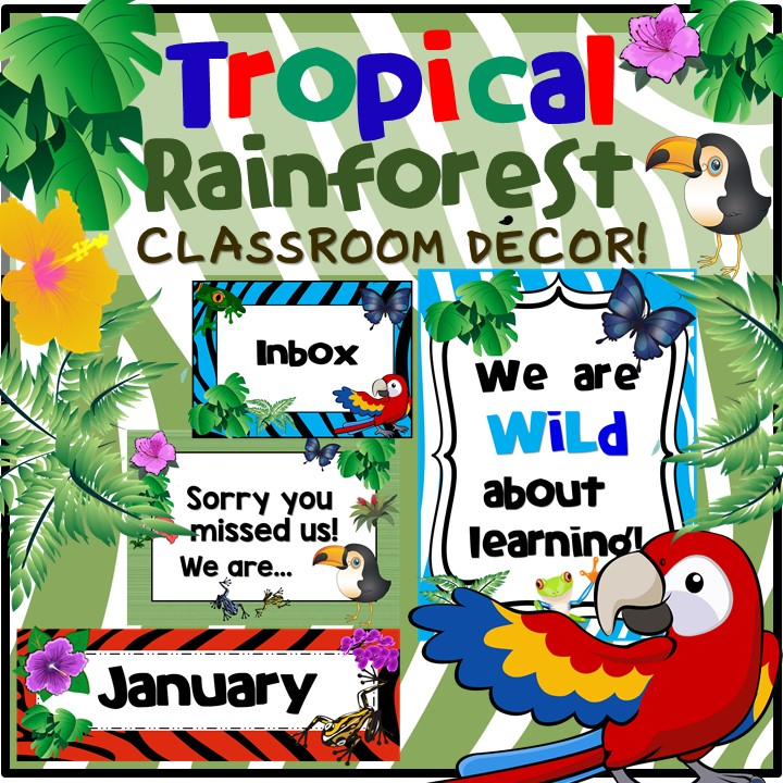 Studentsavvy find a decor theme you love for Rainforest decorations