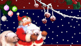 Santa with a bear