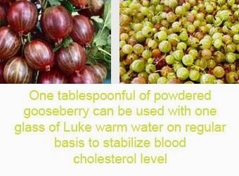 gooseberry health benefits 5