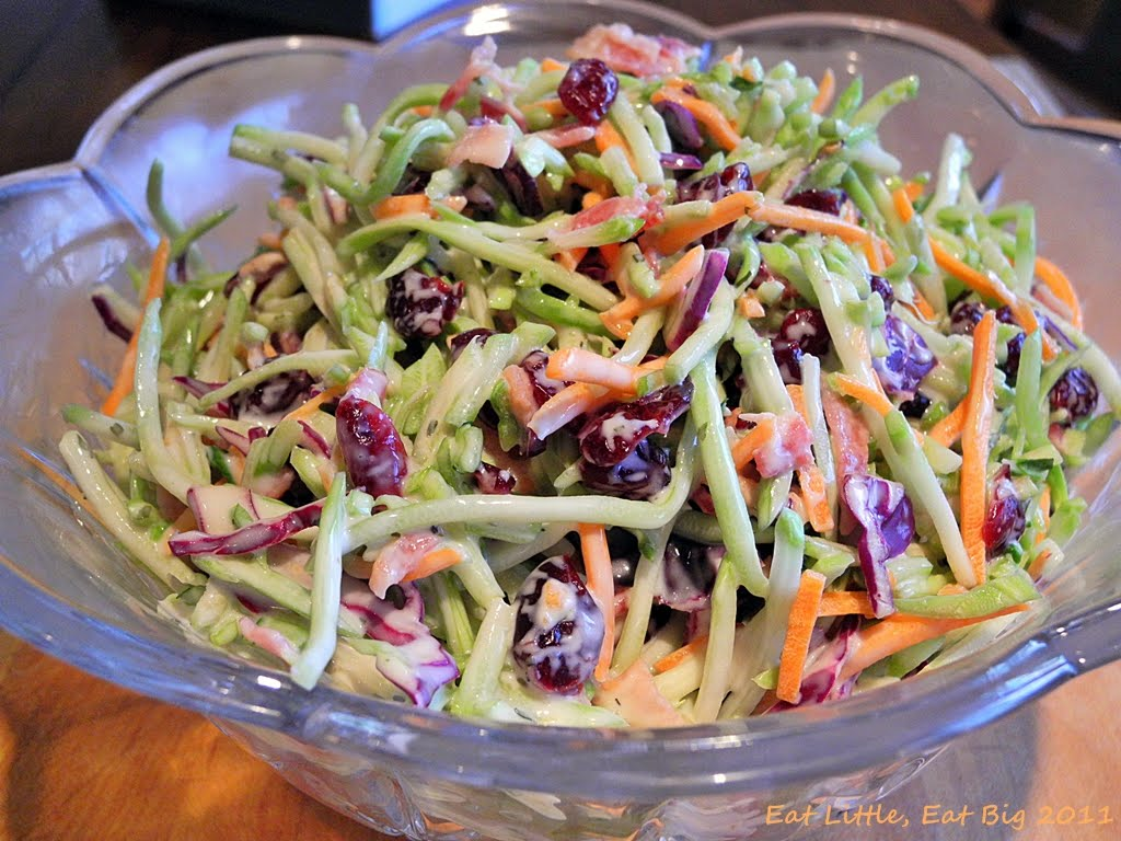 recipe: broccoli slaw salad paleo [3]