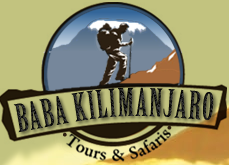 Baba Kilimanjaro Tour Safari