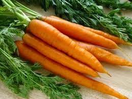 Zanahoria. Beneficios y Propiedades