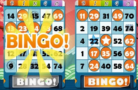 Bingo Won