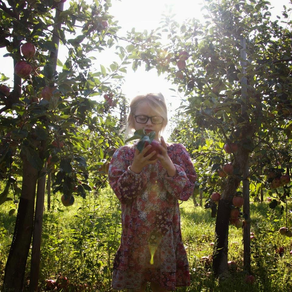 Anya Jensen photography