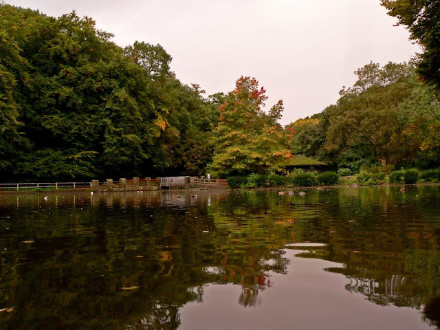Hohenstein Witten Herbst Teich
