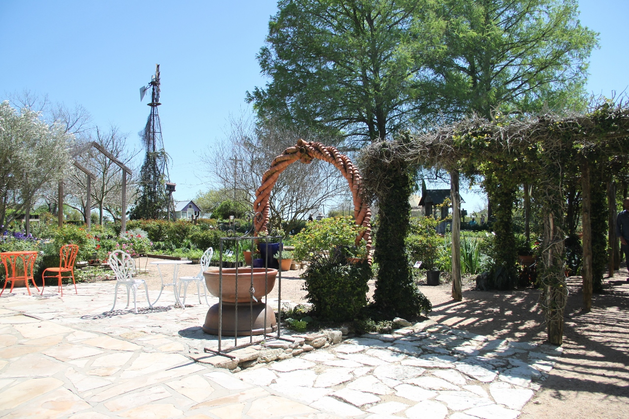 Rock Oak Deer Touring The Antique Rose Emporium In Brenham Part One