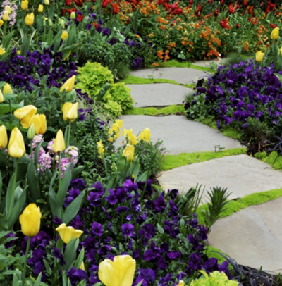 layered bulb garden when it comes to flower bulbs more is definitely