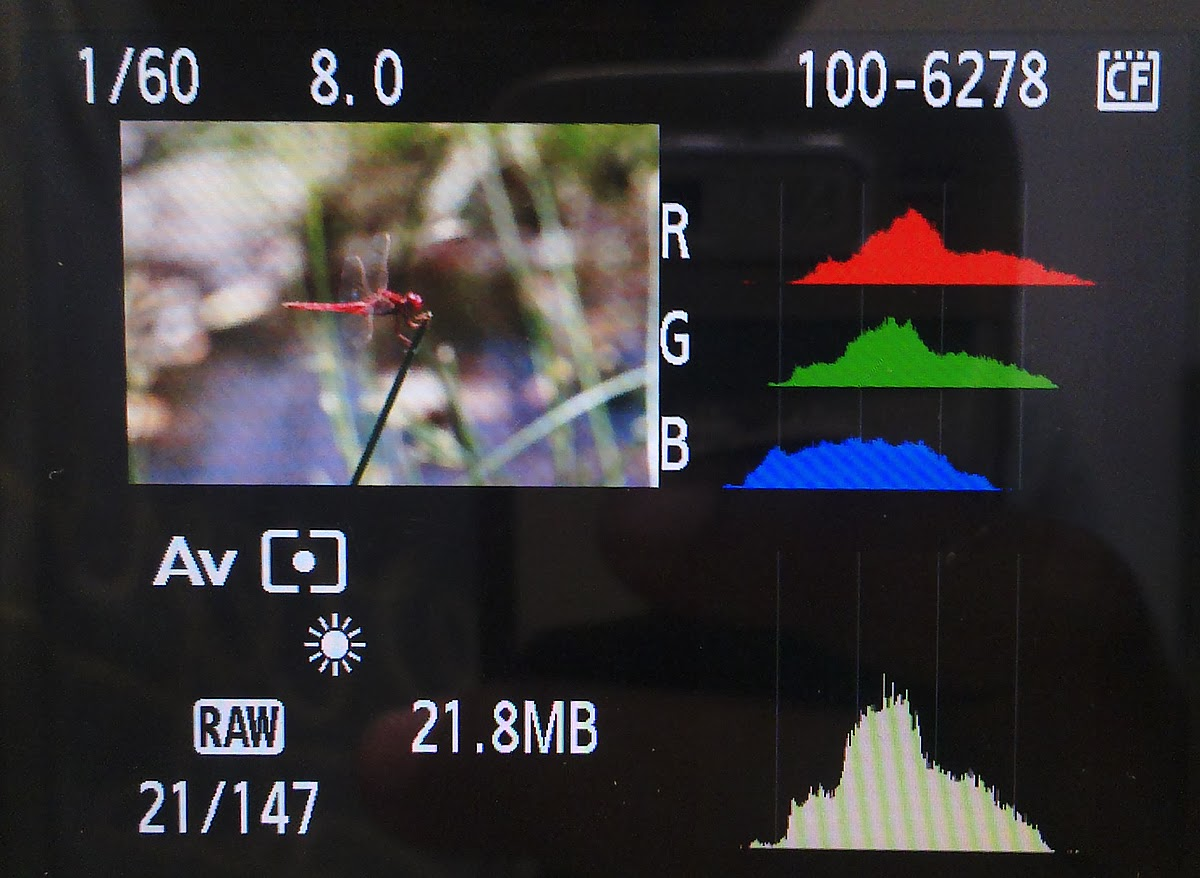 DSLR Histogram