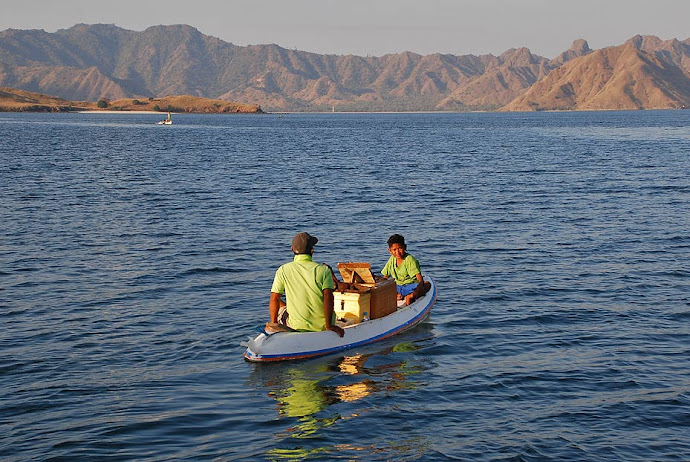 Pequeña barca de remos