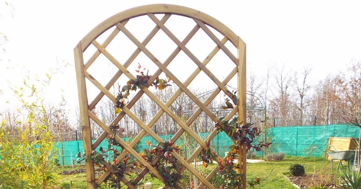 Jardin aux quatre saisons buis taille et nouvelle treille for Alexandre jardin nu