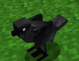 Mo' Creatures pájaro negro Minecraft mod