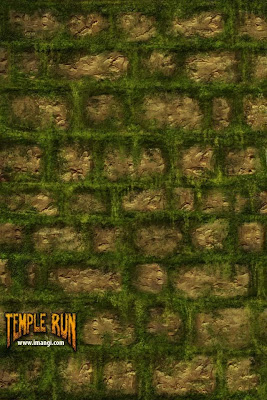 temple run wallpaper download free for iPhone 3