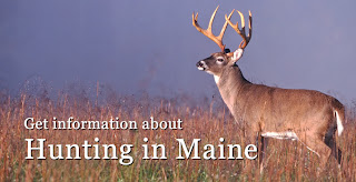 "picture  of a large white tailed deer buck with huge antlers standing on a Prairie of dried grasses. To the left and below it says, ""Get information about hunting in Maine.."""