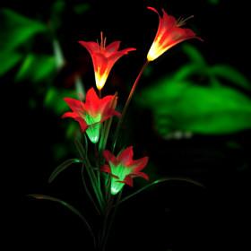 Lights for Garden, Exterior Decoration