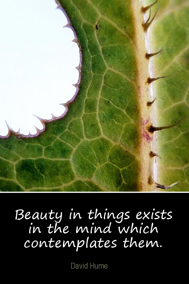 visual quote - image quotation for BEAUTY - Beauty in things exists in the mind which contemplates them. - David Hume