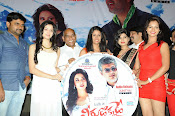 Veerudokkade movie audio launch photos-thumbnail-9